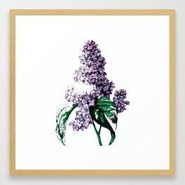 Them Lilac Framed Art Print