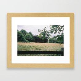 P_04 Framed Art Print