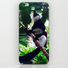 Tropical Varicia Lemur  iPhone Skin