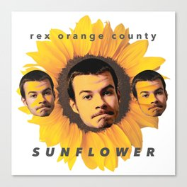 Rex Orange County Sunflower Canvas Print