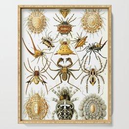 Ernst Haeckel Serving Tray