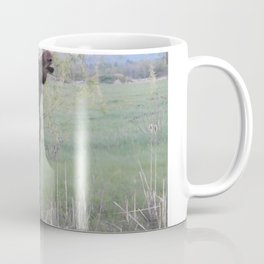 Missy willows evening Coffee Mug