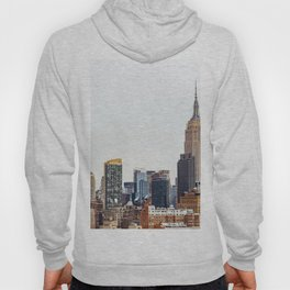 The New York Cityscape City (Color) Hoody