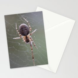 Spider on Orb Web Stationery Cards