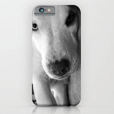 I Triple Dog Dare You Slim Case iPhone 6s