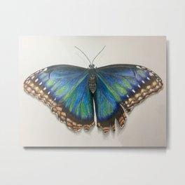 Peleides Blue Morpho Butterfly Metal Print
