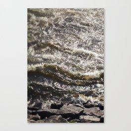 Torrent river Canvas Print