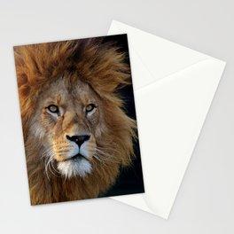 Lion_20180712_by_JAMFoto Stationery Cards
