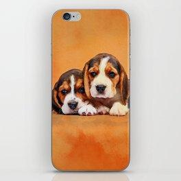 Cute Beagle puppies iPhone Skin