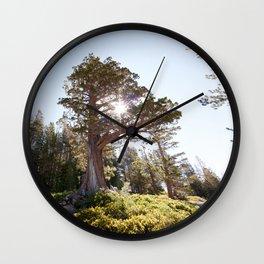 Lopsided Sierra Juniper Tree (Lake Tahoe, California) Wall Clock