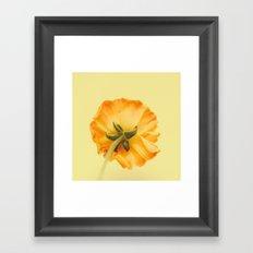arriere Framed Art Print