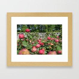 The Biltmore Gardens Framed Art Print