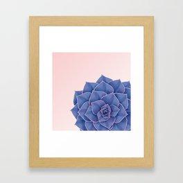 Big Echeveria Design Framed Art Print