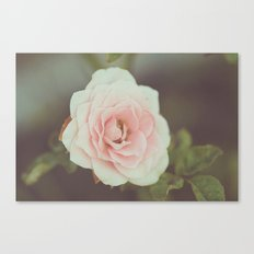 A Fading Beauty Canvas Print