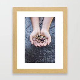Food Jewels BEANS from old Swedish breeds Framed Art Print