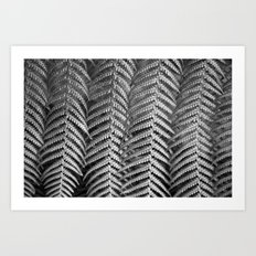 Plant leaf BW Art Print