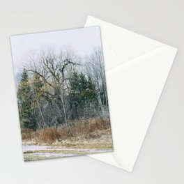 Forest view from the park Stationery Cards