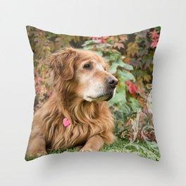 Comanche Autumn Throw Pillow