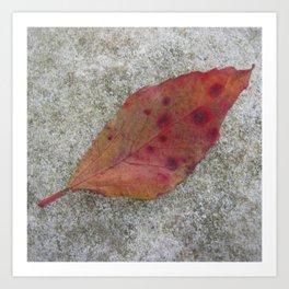 Polka Dots Leaf on Stone Art Print