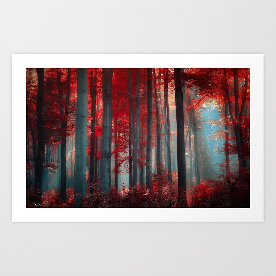 Magical trees Art Print