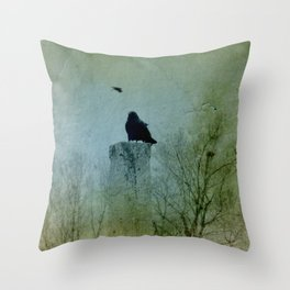 Faded Green  Throw Pillow