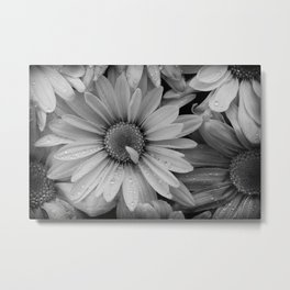 Sepia Toned Flowers Metal Print