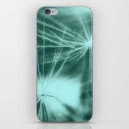 Dandelion Art 3 iPhone Skin