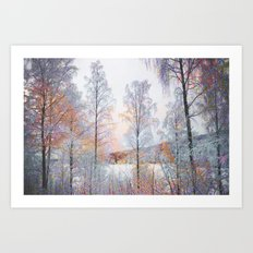 Winter in Norwegian Woods Art Print