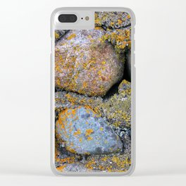 moss & stone Clear iPhone Case