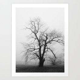 Bare Branches in Winter Fog 2 Art Print