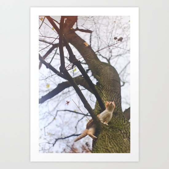Little orange cat on a big tree Art Print