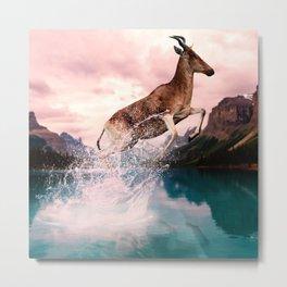 Exploring Deer Metal Print