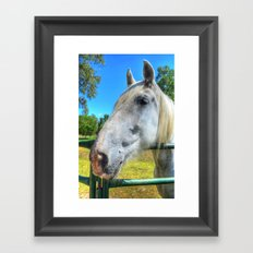 Horsey!  Framed Art Print