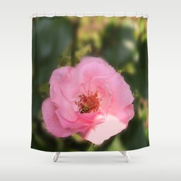 Pink Rose Blossom  & Beetle Shower Curtain