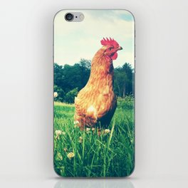The Life of a Chicken iPhone Skin