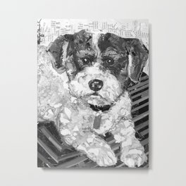 Ricky The Poodle Metal Print
