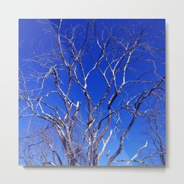 Dead Tree Defiance Metal Print
