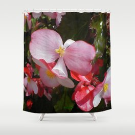 Begonia in the Rose Garden Shower Curtain