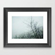 January Fog II Framed Art Print