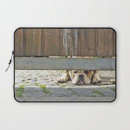 Waiting Bulldog Laptop Sleeve