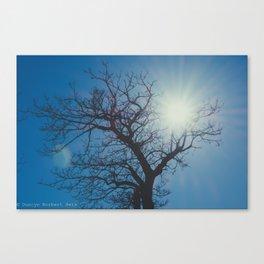 Treelouette Canvas Print