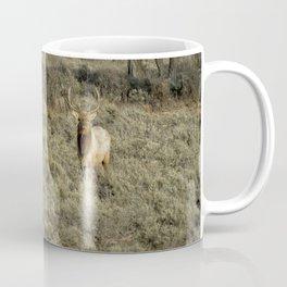 The Bull Elk Coffee Mug