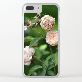 Cream Roses Clear iPhone Case