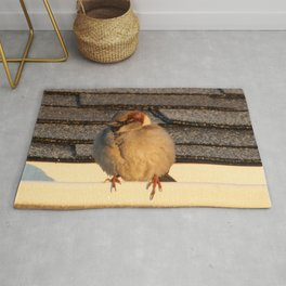Bird on the Roof Rug