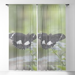Orchard Swallowtail Butterfly Sheer Curtain