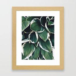 Garden Situation Framed Art Print