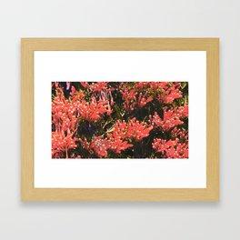 mystic floral Framed Art Print