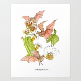 Agave Bats Art Print