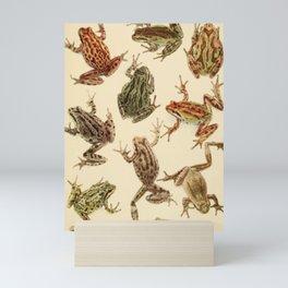 Naturalist Frogs Mini Art Print