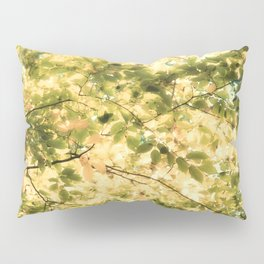 Bright Day Pillow Sham